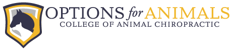 Chiropractic for Pets in Lincoln, NE